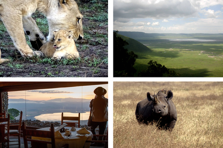 Jour 3 : SAFARI CRATERE DU NGORONGORO